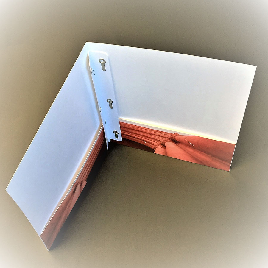 Standard Folder with 3 Clasp Insert Design.jpg